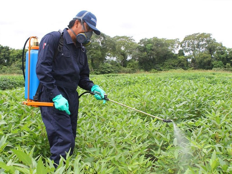 Productos fitosanitarios en Lucena