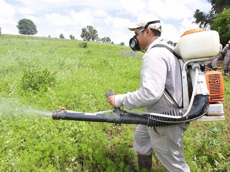 Productos fitosanitarios en Cordoba