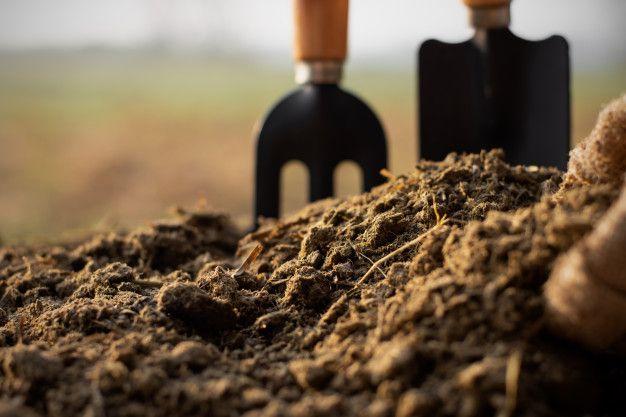 ¿Qué tipo de mantenimiento debe realizarse según el tipo de tierra?