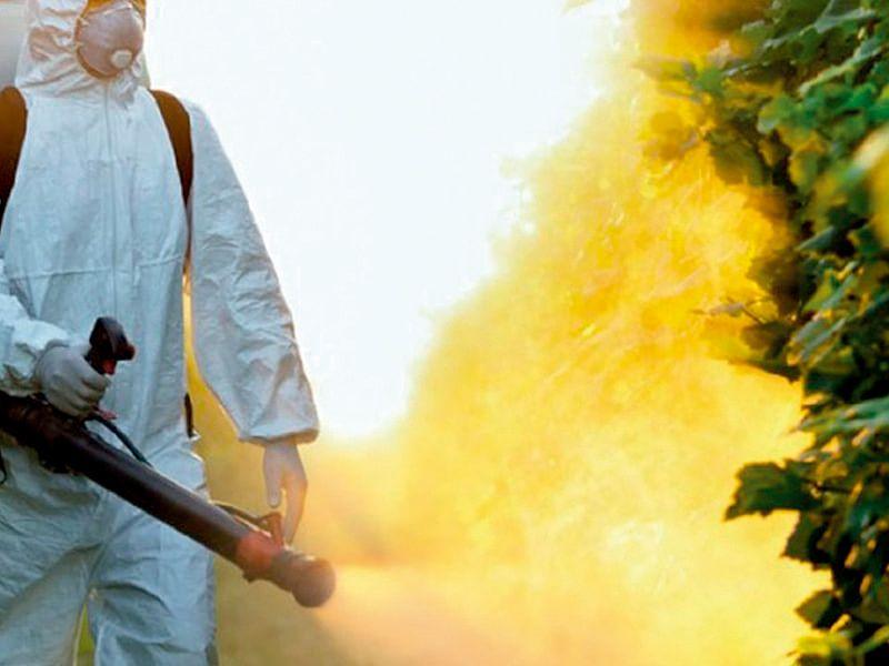 ¿Qué son los productos fitosanitarios?